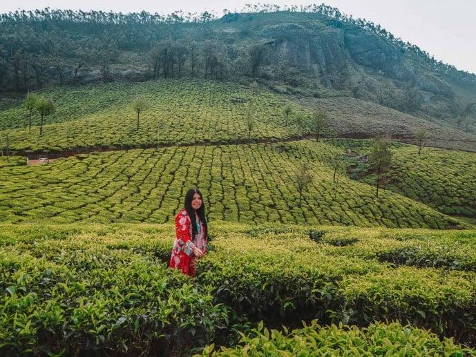 Lockhart Tea Plantation | Tea plantations in Munnar