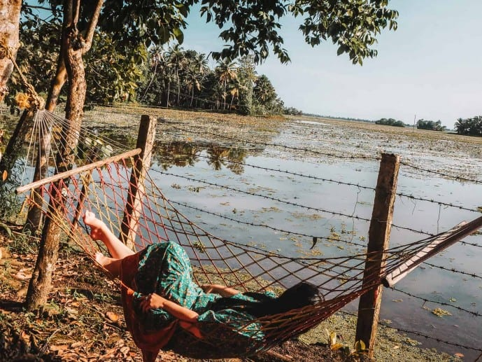 Places to visit in Alleppey in 1 day | Emerald Isle Homestay