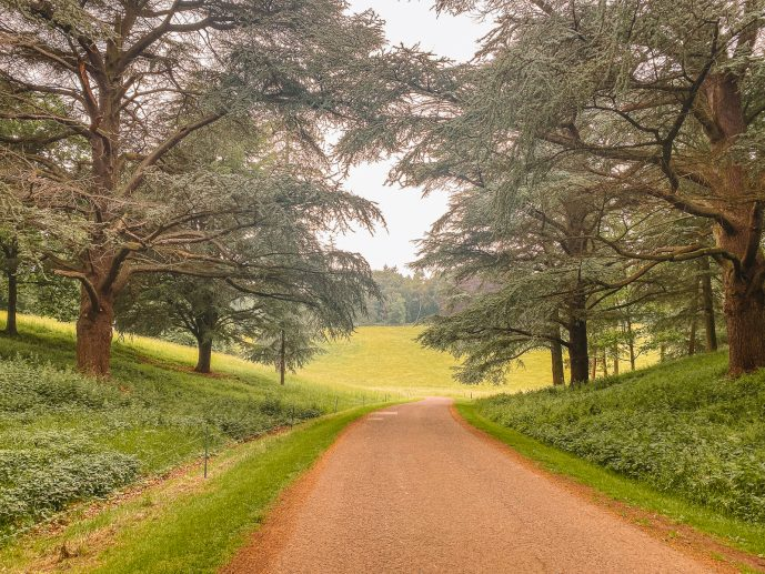 Paths around the Blenheim estate