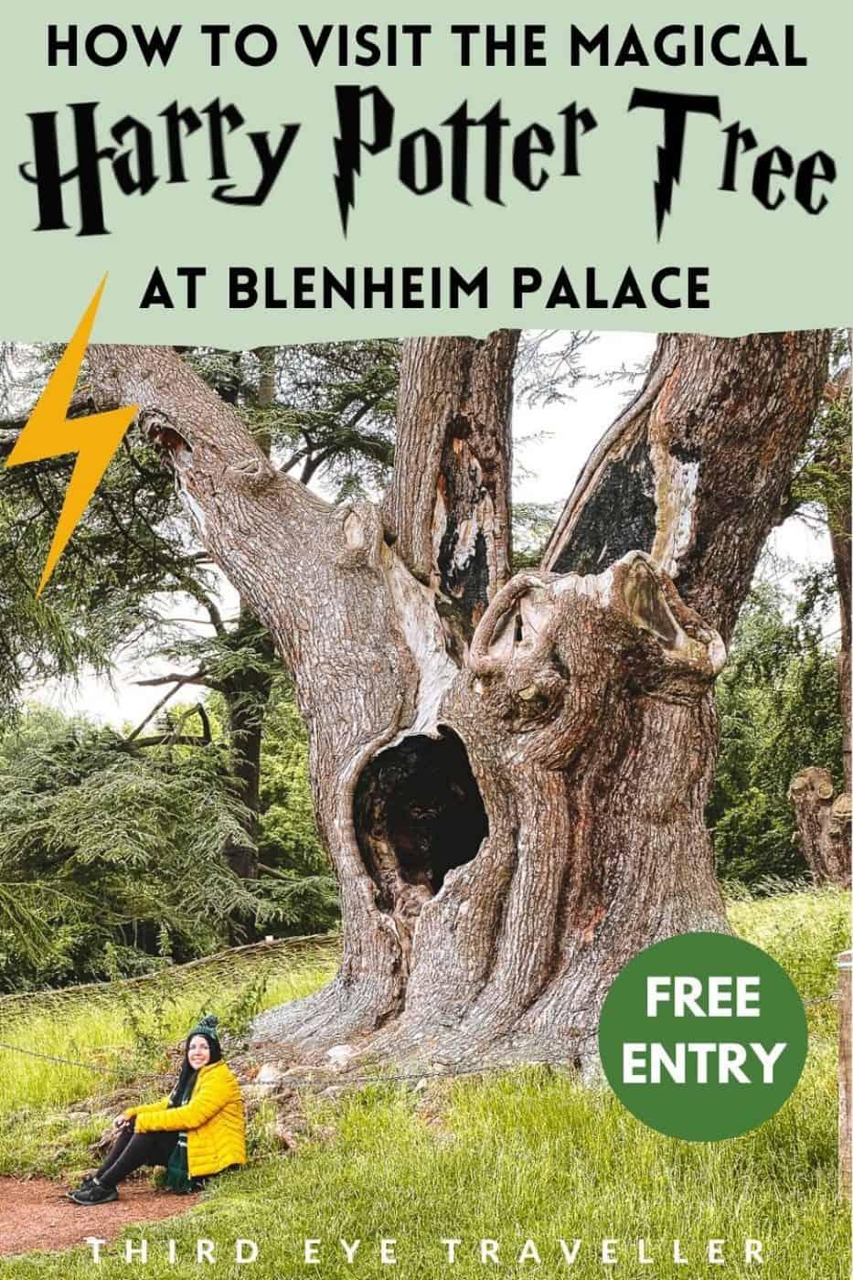 Harry Potter Tree Blenheim Palace