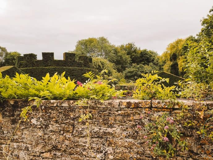 Lacock Topiary!