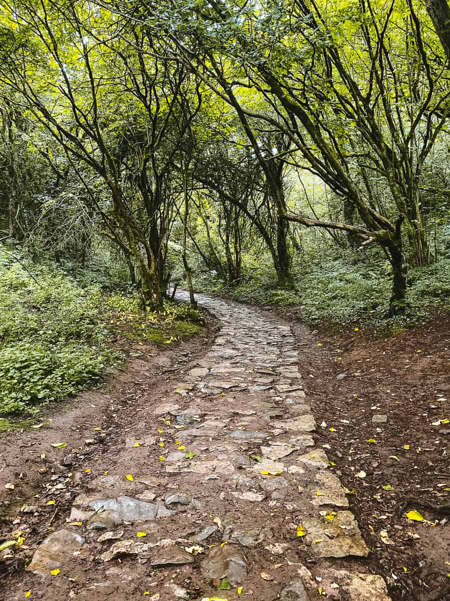 Wetton woodland trail to Thors' Cave