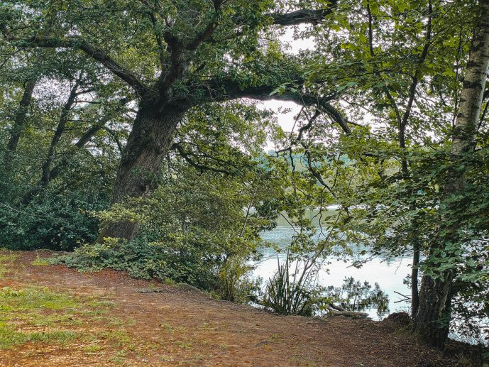Virginia Water Lake Hogwarts Lake