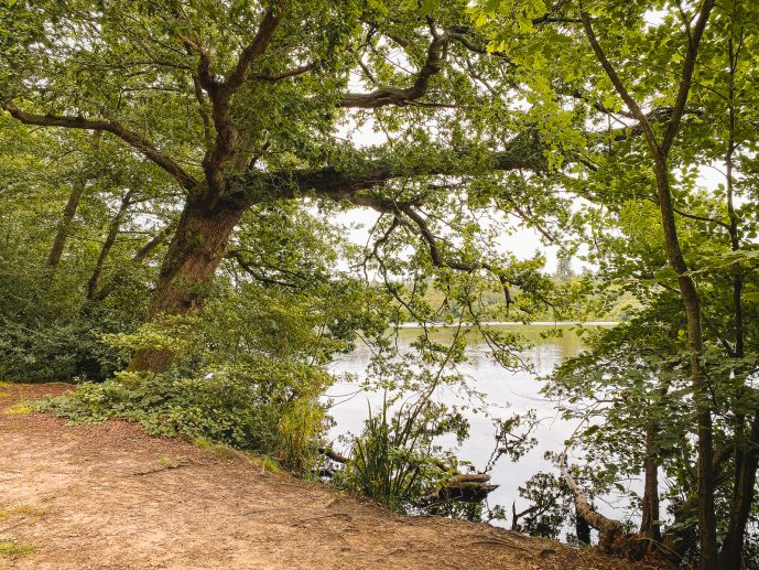 Virginia Water HarrY Potter filming location Goblet of Fire