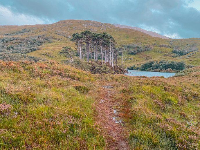 Eilean Na Moine Walk Loch Eilt