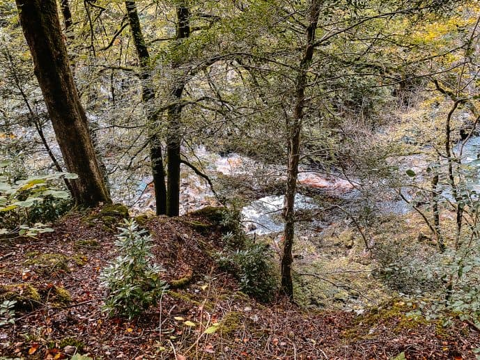 Conwy Falls Forest Park Snowdonia