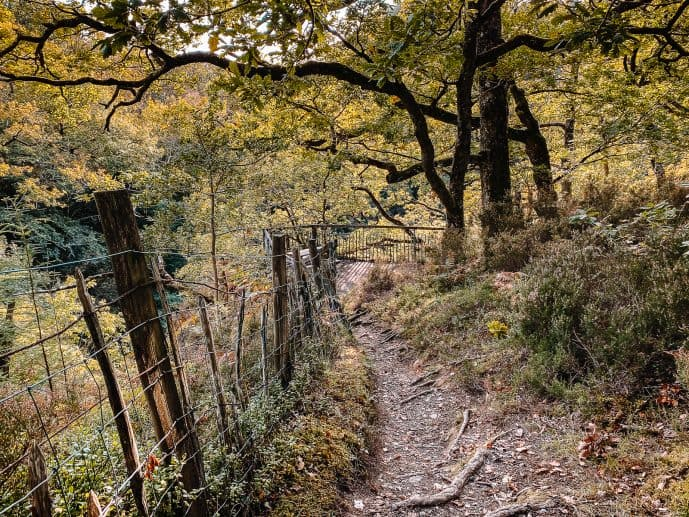Conwy falls walking route path