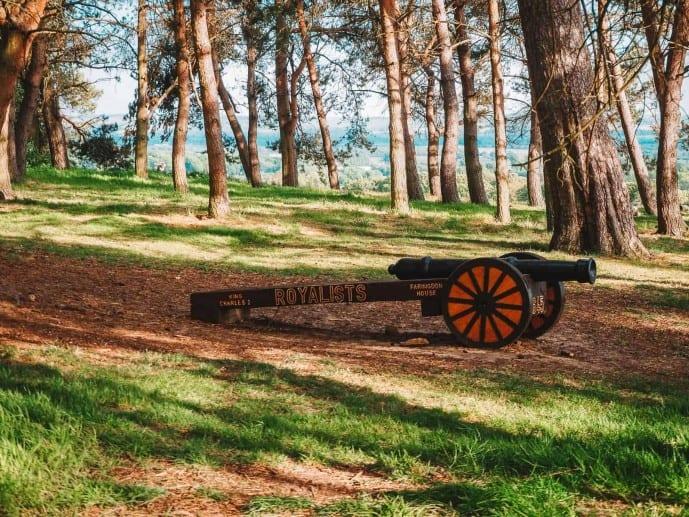 Cromwell's Cannon Faringdon Folly Wood