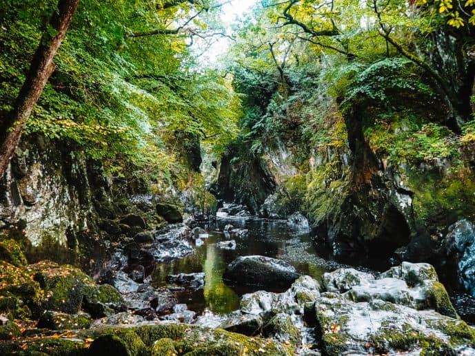 The Fairy Glen Gorge Wales