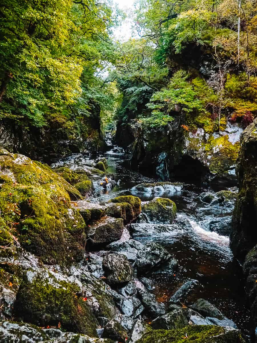 Fairy Glen Gorge Wales Betws-y-Coed