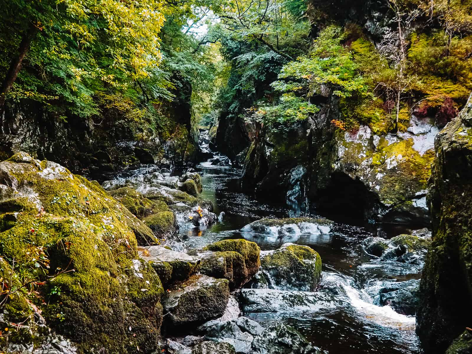 The Fairy Glen Wales Gorge Betws-y-Coed