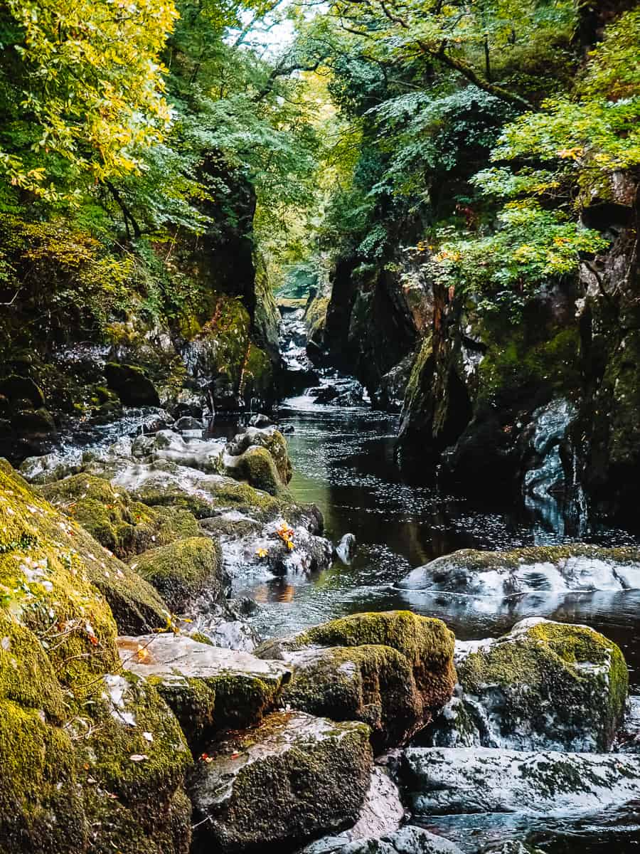 Fairy Glen Gorge Wales Conwy Betws-y-Coed