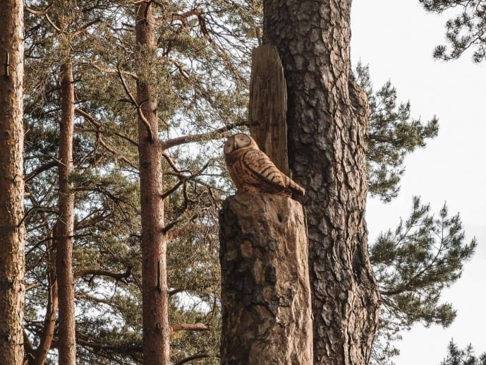 Faringdon Sculpture Trail Owl