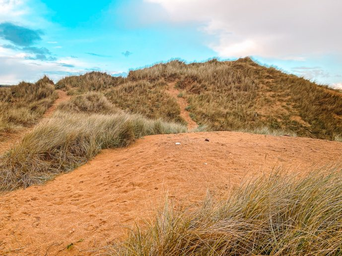 Sand dunes at Freshwater West Beach