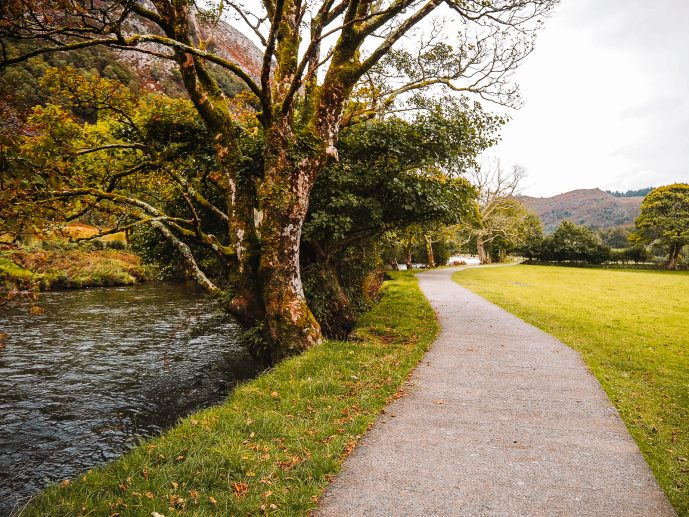 National Trust Path by River Glaslyn Gelert's Grave walk