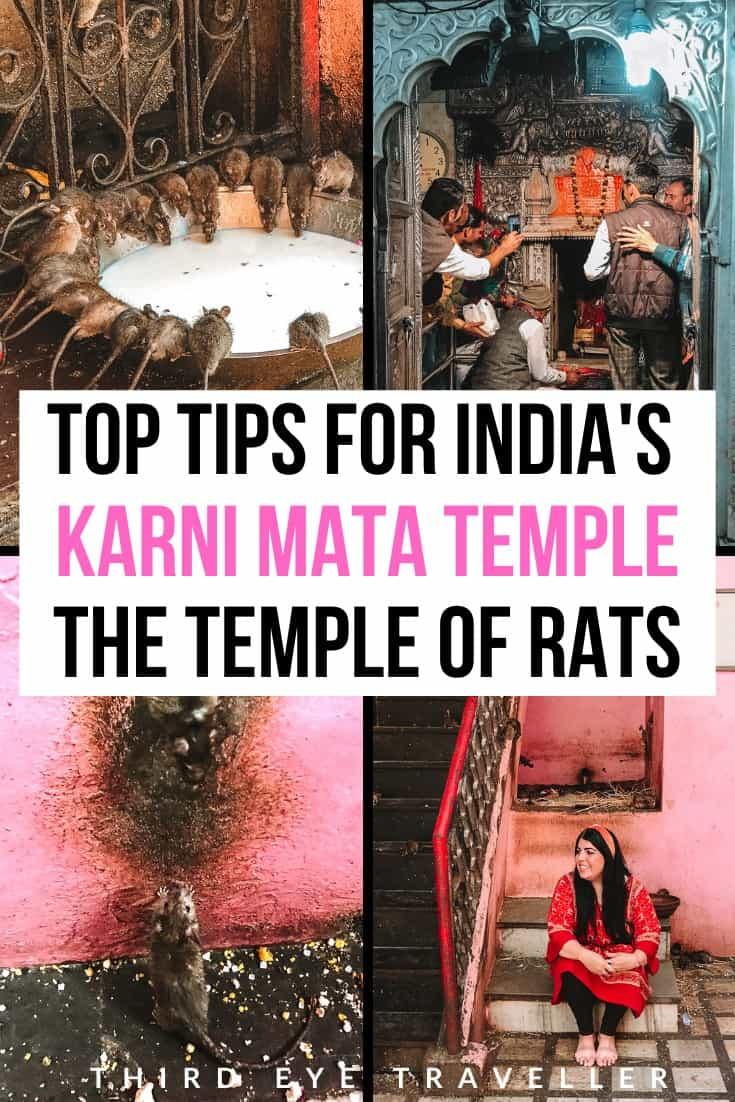 Karni Mata Temple | Temple of Rats India