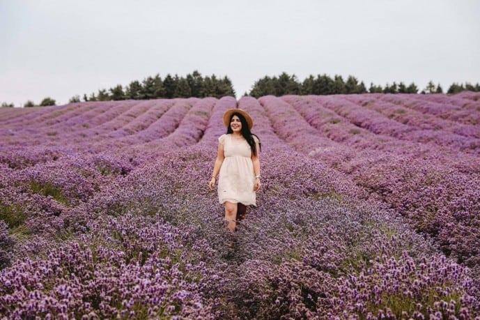 travel tips cotswold lavender