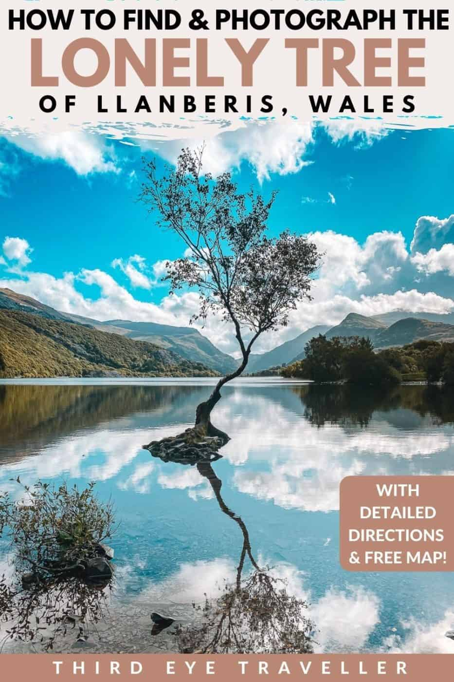 Lonely Tree Llanberis Location Snowdonia