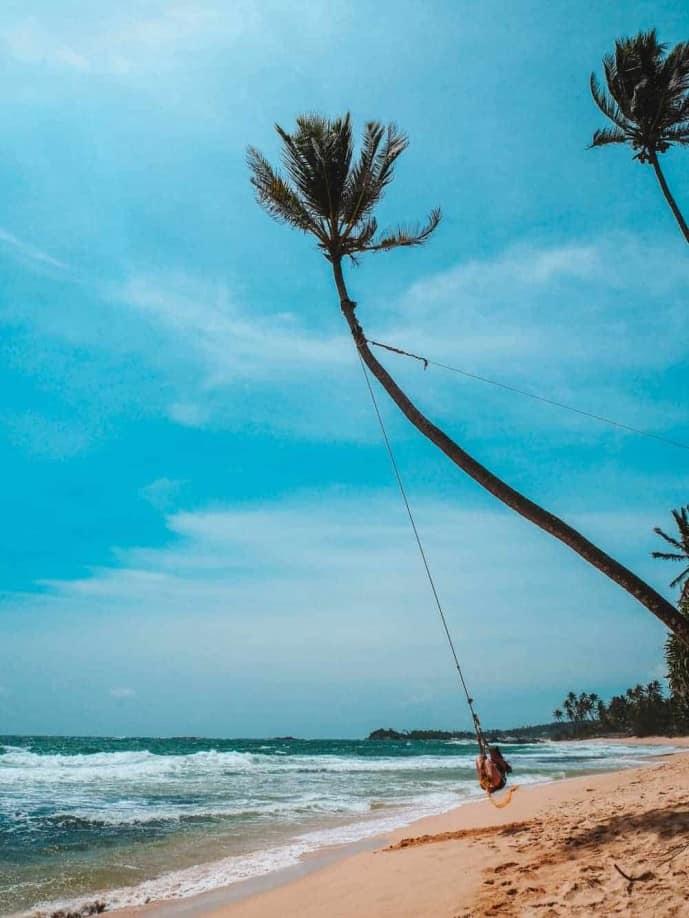 Palm Tree Swing Sri Lanka