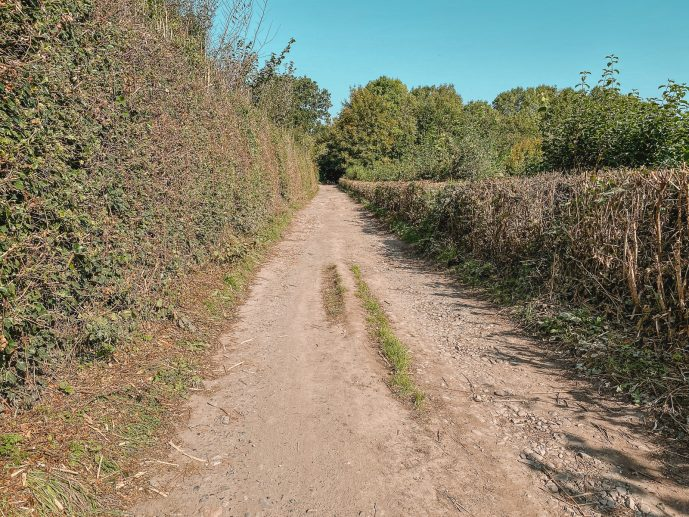The path to the Warren