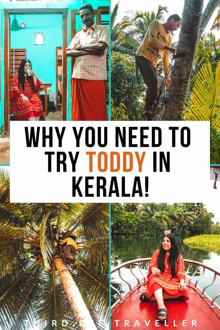 Toddy in Kerala | Toddy shop in Kerala | Toddy tapping Kerala