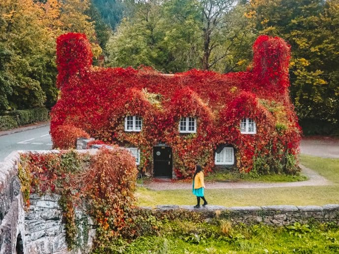 Tu Hwnt I'r Bont Red Leaves Tearoom Wales