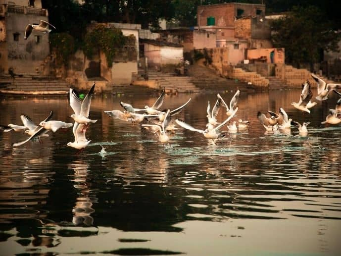 Yamuna Ghat Delhi photography location sunrise